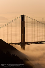 Photo: Foggy Sights, San Francisco Typical day in San Francisco... for some