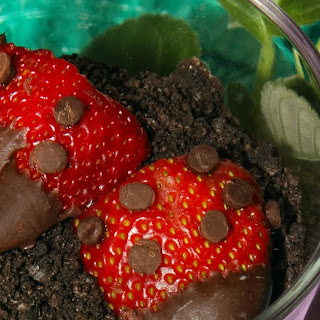 Chocolate Pudding Dirt Cups with Strawberry Ladybugs and Earth friendly prAna clothing
