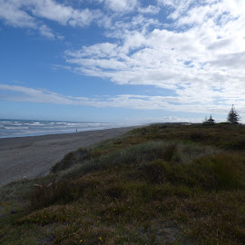 Otaki beach facing north by Mark Dickinson - Landscapes Beaches