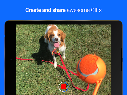 Gfycat Loops: GIF Cam+Recorder Screenshot