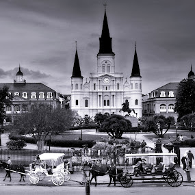 Jackson Square by Brook Kornegay - Black & White Street & Candid ( new orleans, church, cathederal, jackson square,  )