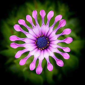 20150707_GardenRouteGameLodge_0770-Edit.jpg