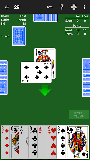 29 Card Game by NeuralPlay 1.23 screenshots 1