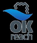 Certificado OK REACH de las almohadas belnou