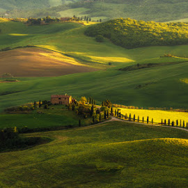 Sunny villa by Ash Vain - Landscapes Prairies, Meadows & Fields ( grassland, tuscany, nature, grass, sunset, sunlight, landscape, italy, fields )