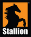 Stallion Oilfield Services