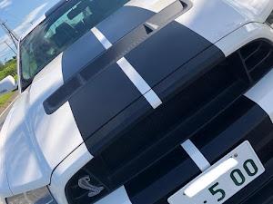 シェルビー  GT500のカスタム事例画像 blk_challengersrthellcatさんの2019年08月31日16:58の投稿