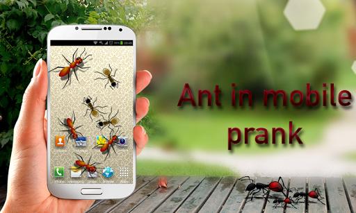 Ants in Mobile Prank