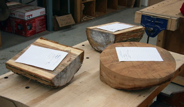 Photo: The Silent Auction has some nice elm and cherry.