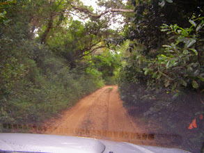 Photo: Off road in Ponta do Ouro