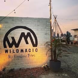 WILDMAGIC -THE THIRD PARK-(ワイルドマジック ザ・サード・パーク)