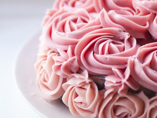 Rosa, rosae, rosarum di utente cancellato