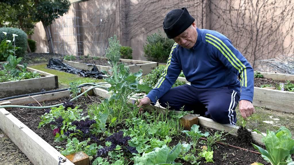 A person kneeling down to garden