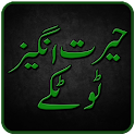 Totkay in Urdu icon