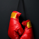 Wallpapers Boxing icon
