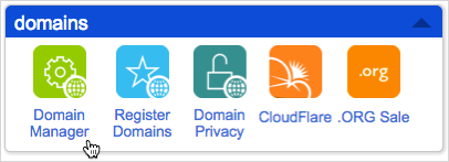 Domain Manager icon