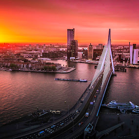 Netherland, Rotterdam, Morning Sunraise of Erasmus Bridge by Charles Ong - Buildings & Architecture Bridges & Suspended Structures ( netherland, erasmus bridge, landmark, rotterdam, hdr, ferry, bridge, travel, boat, sunraise, river, , color, colors, landscape, portrait, object, filter forge )