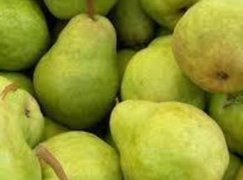 Mama's Pear Preserves Recipe