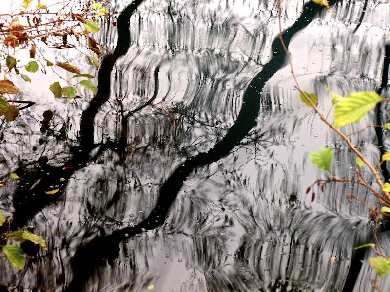 Dipinto sull'acqua di Gian78K