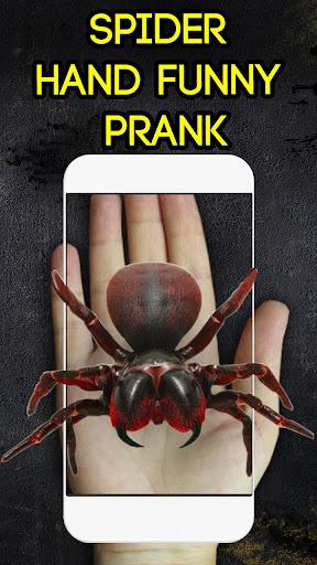 蜘蛛手滑稽的恶作剧
