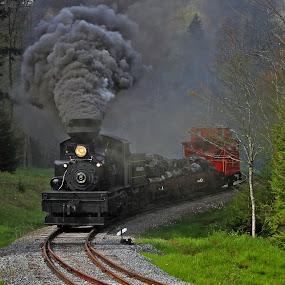Mainliner by Chuck  Gordon  - Transportation Trains ( cass, steam train, trees, forest, switch, smoke )