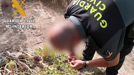 Las actuaciones dejan 7 investigados y permiten liberar a 15 jigueros