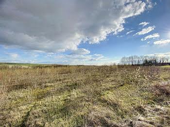 terrain à Dommartin-Varimont (51)