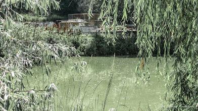 Photo: 2013.06.24 - Lacul Troacelor