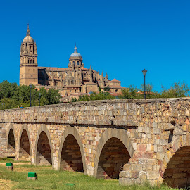 puente y catedral salamanca by -. Phœnix .- - City,  Street & Park  Vistas ( salamanca, puente, catedral )