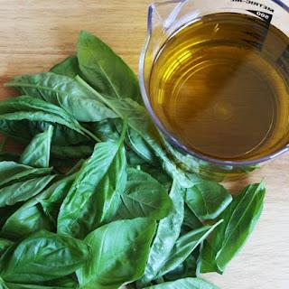 Basil Infused Oil Recipe
