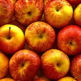 Apples  by Aung Kyaw Soe - Food & Drink Fruits & Vegetables