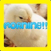 MORNING!!