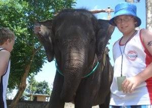 Bali elephant ride