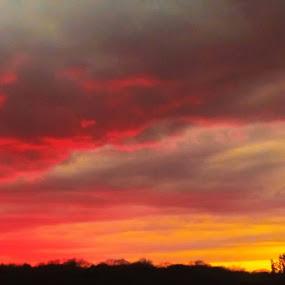 by Andrew Medvegy - Landscapes Sunsets & Sunrises (  )