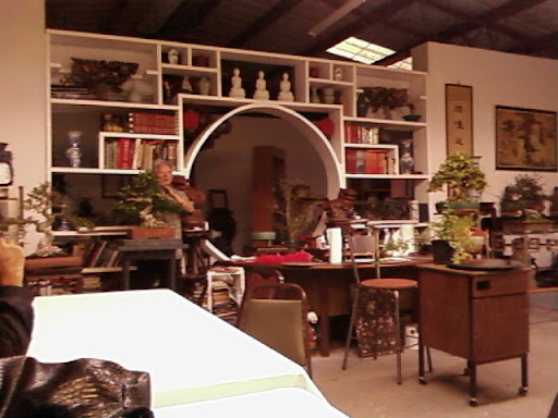 www.RickNakama.com bonsai master walter liew dragon garden