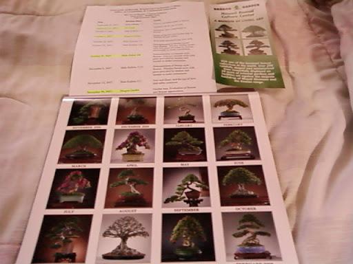 www.RickNakama.com art of bonsai with Master Walter Liew