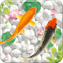 Fish Live Wallpaper Free - Aquarium Koi Bgs icon