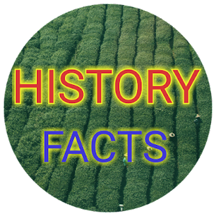 Historical facts: Amazing history news - náhled