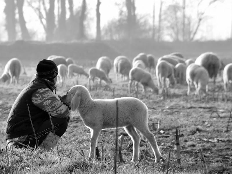 Is this a men's world? di Andrea Noli