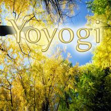 Photo: Yoyogi