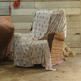 A seat a covered by Russell Benington - Artistic Objects Furniture ( chair, grease, nz, dirt, wool, wall, woolshed,  )