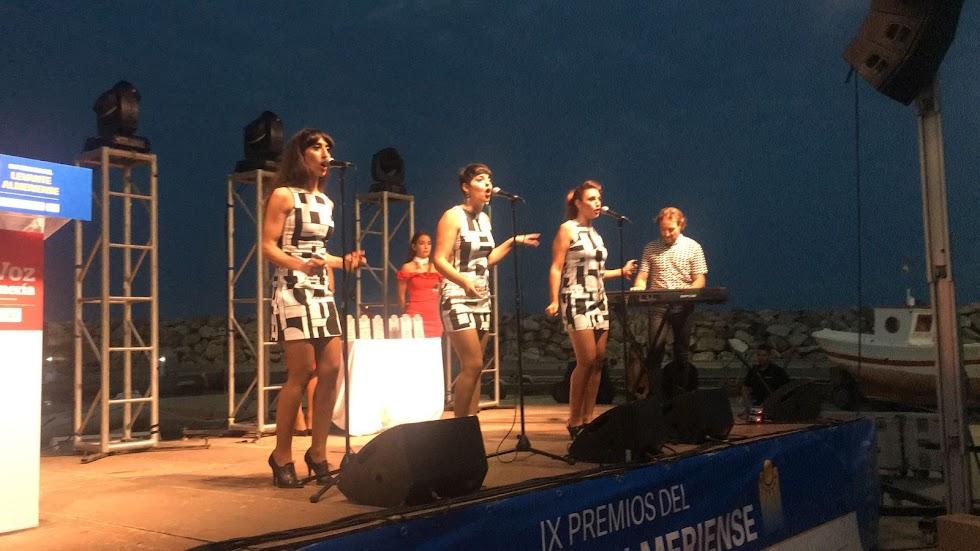 Villaricos viaja hasta los EEUU de décadas atrás en esta gala con la actuación de DonElles.