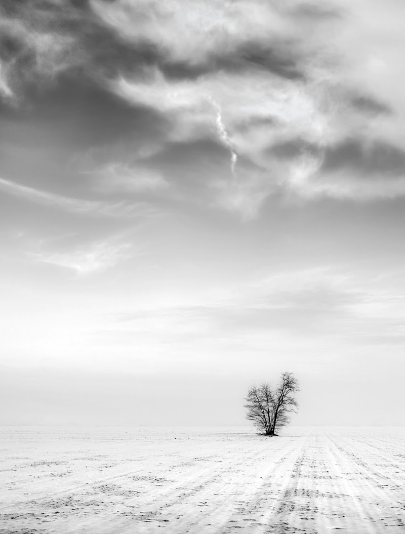Dopo l'inverno... di Livius