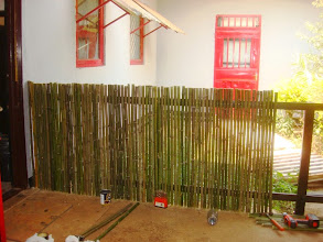 Photo: A new bamboo dog fence we have erected in our courtyard.