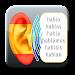 Learn Spanish Verbs icon