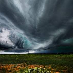 Texas Storm by Craig Curlee - Landscapes Weather ( countryside, field, clouds, skyline, grass, green, texas, landscape, storm, cactus )