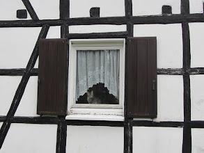 Photo: We hebben bekijks in Kalterherberg