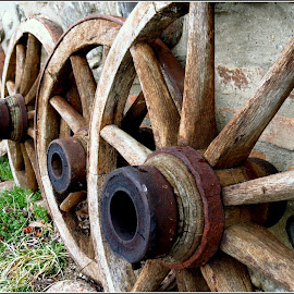 Lined up by Alunita Munteanu - Products & Objects Technology Objects ( wood, wheels, alunita munteanu, spokes )