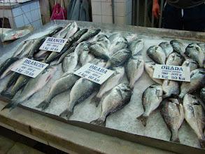 Photo: Zadar - targ rybny - Chorwacja