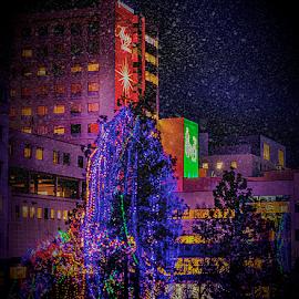 Sacred Heart at Xmas by Anthony Balzarini - Buildings & Architecture Public & Historical ( #washington, #snow, #christmas, #photography, #sacredhearthopsital, #sacredheart, #winter, #spokane, #hospital )